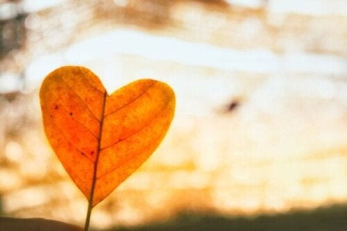 Onvoorwaardelijke liefde gebruiken om een relatiebreuk te boven te komen